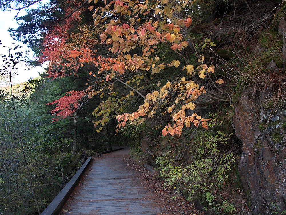 Trail to Tokusawa