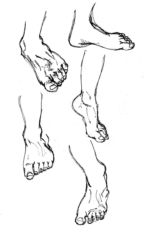 foot_studies_001