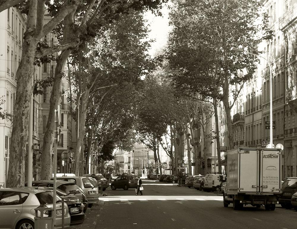 Pyrenees Trip Downtown Lyon