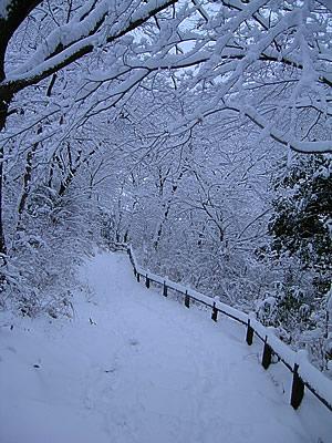 Takao snow tunnel