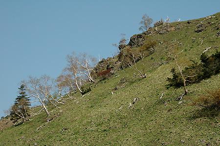 Oku-Shirane ridge flank
