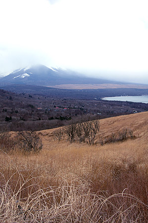 Mt. Fuji and Yamanaka-ko