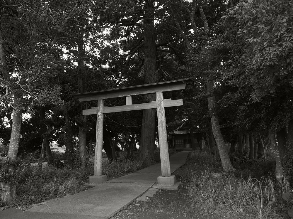 2012/07/14 Naruto Walk Shrine Entrance