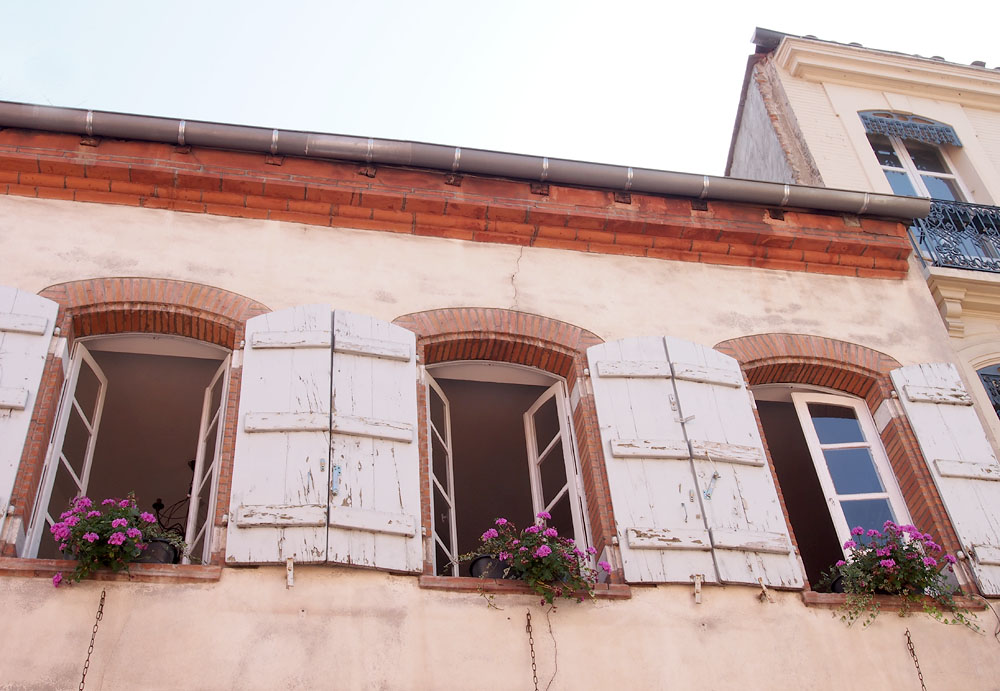 Pyrenees Trip Toulouse Window Flowers