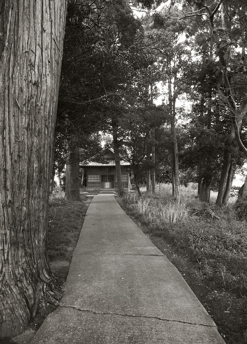 2012/07/14 Naruto Walk Path to the Shrine