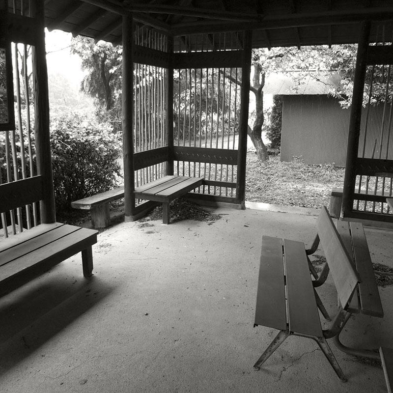 maruyama_walk_005