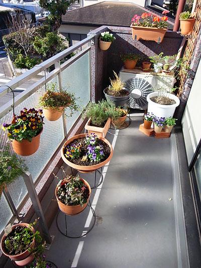 Balcony Garden 2