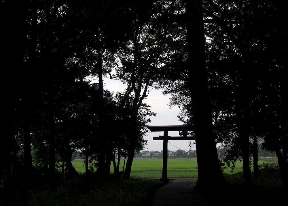 2012/07/14 Naruto Walk Torii Silhouette