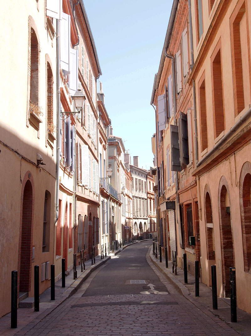 Pyrenees Trip Toulouse Pink Street