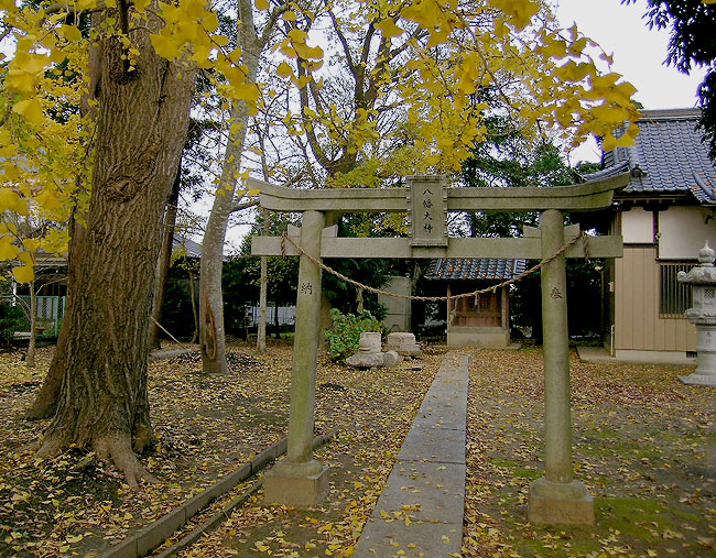 Gumyo Gingko Shrine