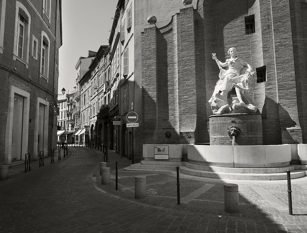 Pyrenees Trip Toulouse Statue and Fountain