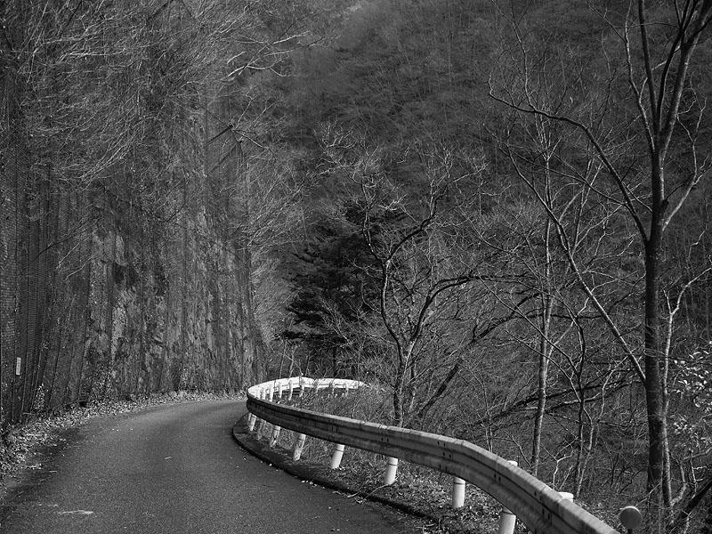 Okutama Mukashimichi Quiet Road