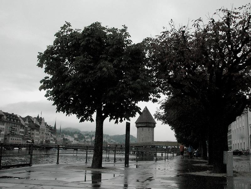Luzern Arbor