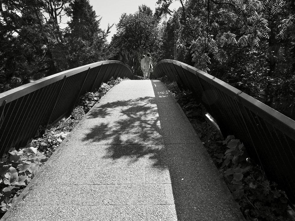 Pyrenees Trip Toulouse Jardin des Plantes Bridge
