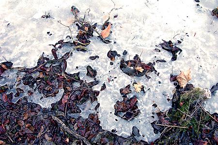 Mikuni ice debris 2