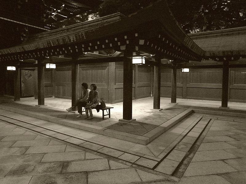 Meiji Jingu Sitting