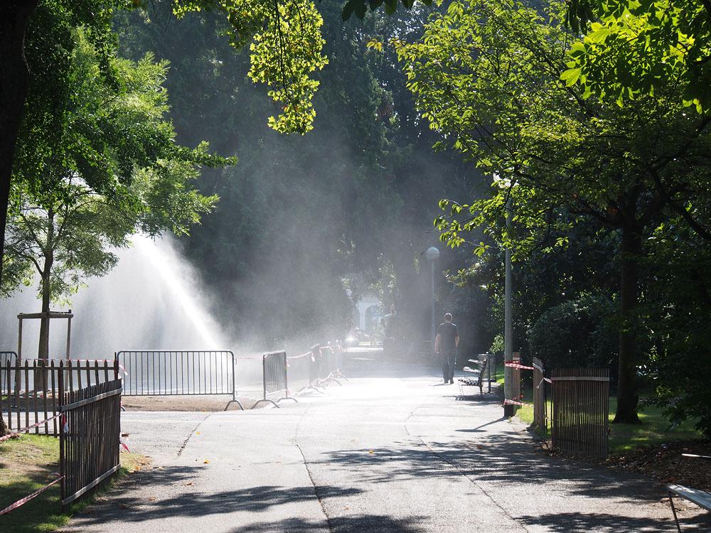 Geneva Jardin du Anglais Mist